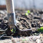 Zorg met mooie bestrating voor variatie in uw tuin