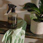 Hoe en waarvoor schakel je een schoonmaakbedrijf in?